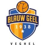 Blauw Geel'38 sportfysiotherapie Veghel
